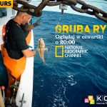 Konkurs Koba National Geographic Channel